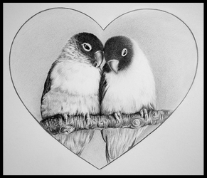 lovebirds by pitch-kee
