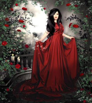 Red Roses by Jassy2012