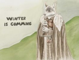 The Winter is comming by SteinWill