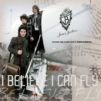 I believe I can fly - JoBros by ownthesunshine
