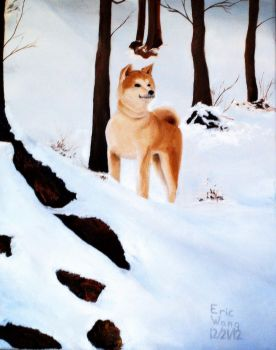 A Dog in the Snow by Rrgrg