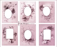frame brushes by cheapxxperfume