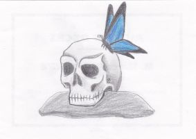 The Pretty Skull. by Alphagoth