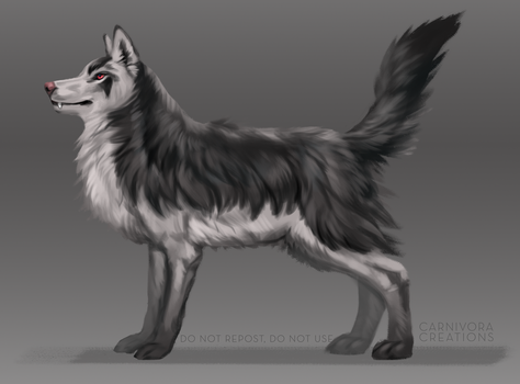 Mightyena by Chickenbusiness