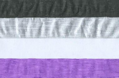 Ace Pride Flag by gpsc