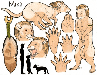 Mikr - Character Sheet by Battleferrets