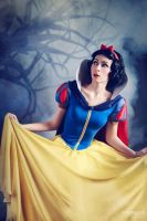Snow White in the forest by BirdSophieBlack