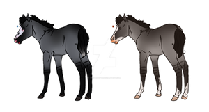 Grullo Foals - Both Sold by Miss-Adopts