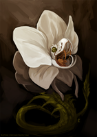 Orchid Viper by Kipine