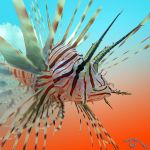 Lavish Lionfish by FauxHead