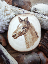 Pyrography Foal by squanpie