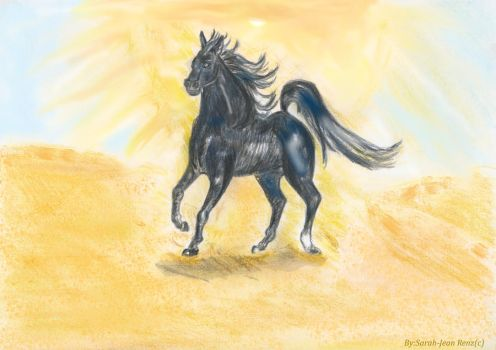 Black Egyptian Arabian Horse by Draco-Bellatrix