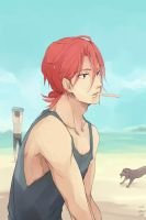 Free! Summer by sawa-rint