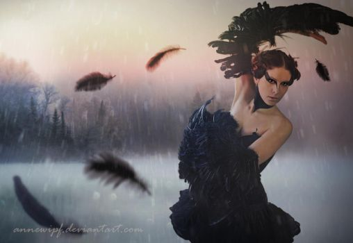 Black swan 2015 by annewipf