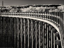 Universal Bridge - Close (930nm IR) by KBeezie