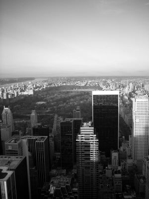 Areial View of Central Park by DJKibyKat