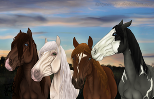 YHH aucition - FINISHED by KittycatNita