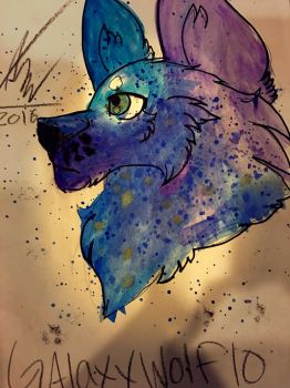 For Galaxywolf10 by The-WhiteLioness