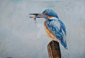 Kingfisher 2 by tiletable