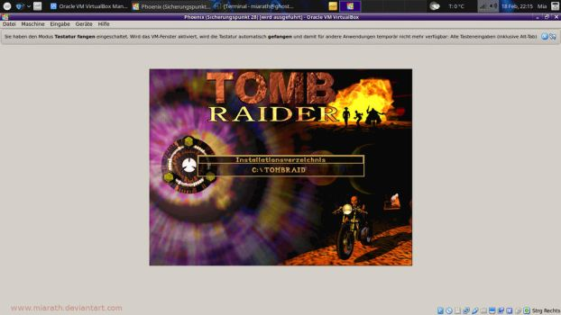 Tombraider one install by Miarath