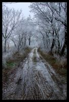 Winter Road by Necrotrup