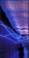 Soaring Neon by matic