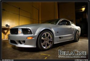 05 Saleen 8711 by scarcrow28