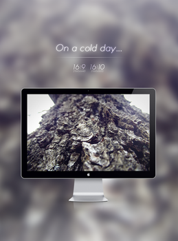 On a cold day... [Wallpaper] by Fnzzy