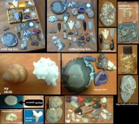 My Rock collection by hodgeunicorn