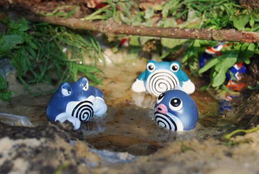 Poliwag, Poliwhirl, Poliwrath by KleeNoodle