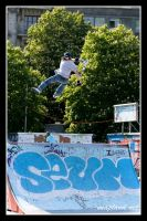 SK8PARK_3 by snapboy
