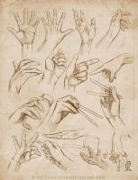 +HAND STUDY . EXPANDED+ by jinx-star