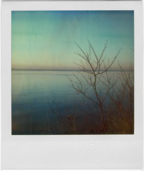 matins, polaroid by equivoque