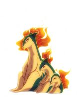 Cyndaquil Quilava and Typhlosion by francis-john