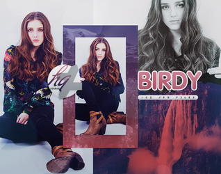 Photopack 832 // Birdy by HQSource