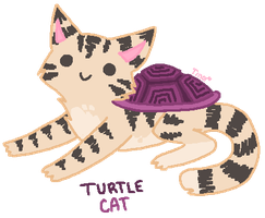Turtle Cat by TinySauce