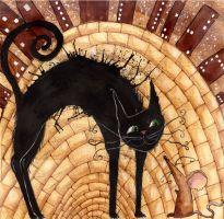 The cat in the Alley by 00-TERy-00
