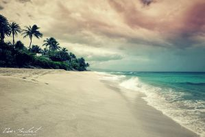 Memories of Hawaii by IsacGoulart