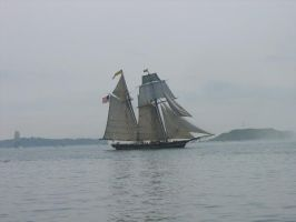 2007 Tall ships by Lily-the-pink