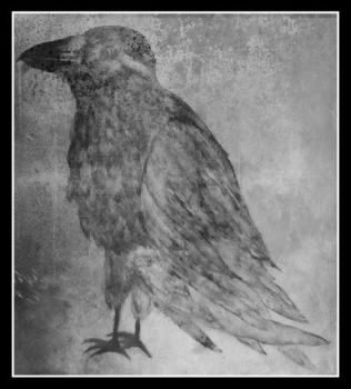 Quoth the Raven Nevermore by CrashMcQueen