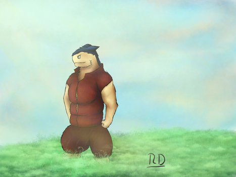 Typhlosion on a meadow.. or something by IchbinderIchRaphael