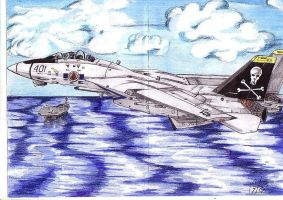 F-14 and Aircraft carrier by Maverick-21