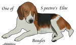 Beagle Lineart by WhiteRozePetals