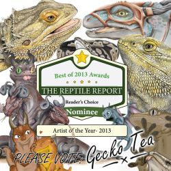 The Reptile Report: Artist of the Year 2013 by HRLSS-GeckoTea