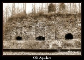 Old Aqueduct by syrenemyst