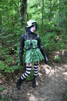 Mad Hatter Pigeon-5 by cursed-photography