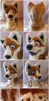 Canine partial by Adele-Waldrom