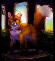 The Fox In The Forest by DancingfoxesLF