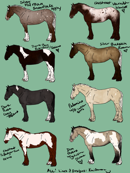 :: Horse Raffle :: Closed. Winners are up! by Equine-Import-Centre