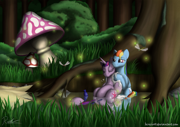 The Spring Of Dreams by BCRich40